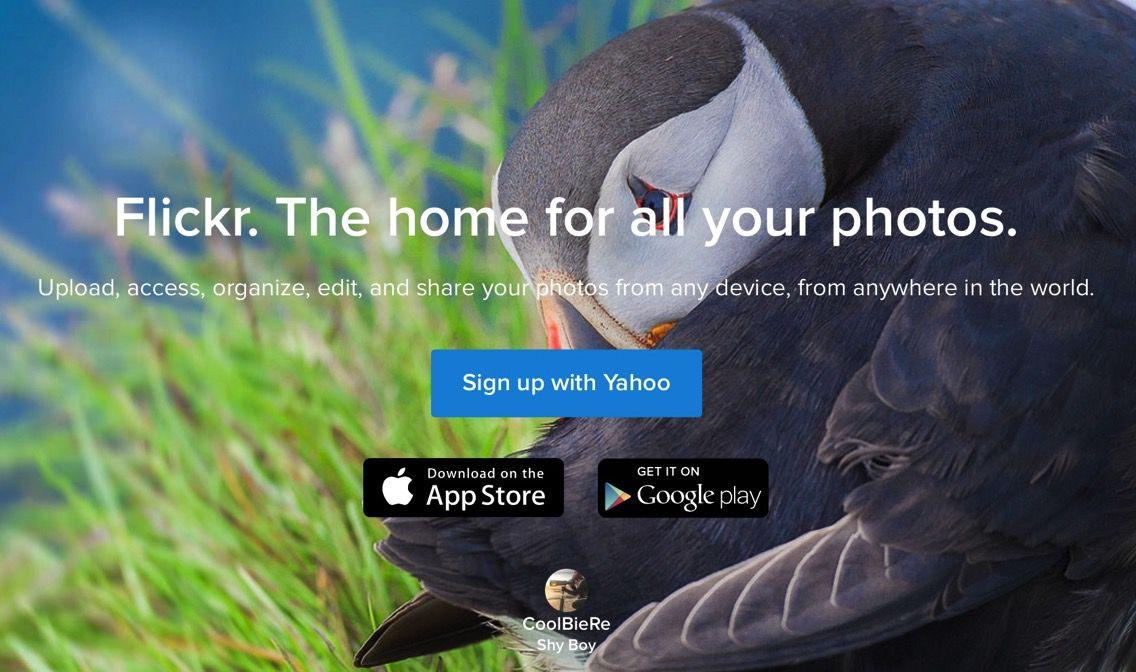 Flickr、写真を一括ダウンロードする機能を公式対応(カメラロールのみ)